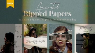 Photo of Ripped Paper Instagram Stories Template PSD