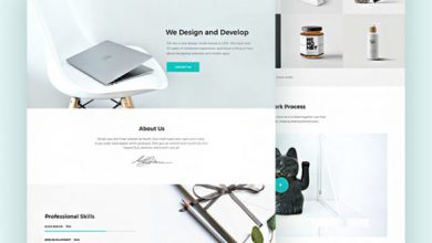 Photo of Piroll: A design web template for agency/personal portfolio