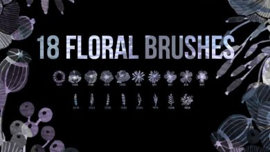 Photo of 18 Watercolor Floral PS Brushes