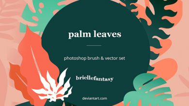 Photo of Palm Leaves Brushes
