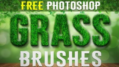 Photo of Green Grass Ps Brushes