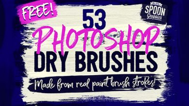 Photo of 53 Dry Brushes Made From Real Brush Strokes
